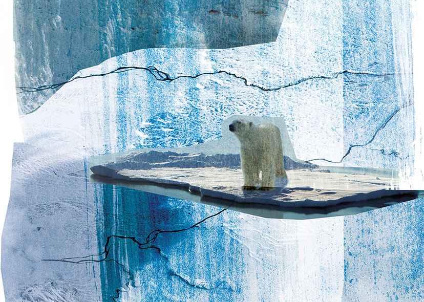 postnormal Times Exhibition – artwork for exhibition