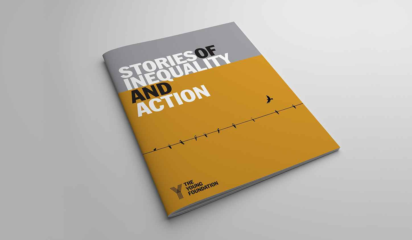 YF Stories of inequality cover